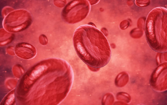 New and Emerging Options for Hematologic Disease–Related Anemia