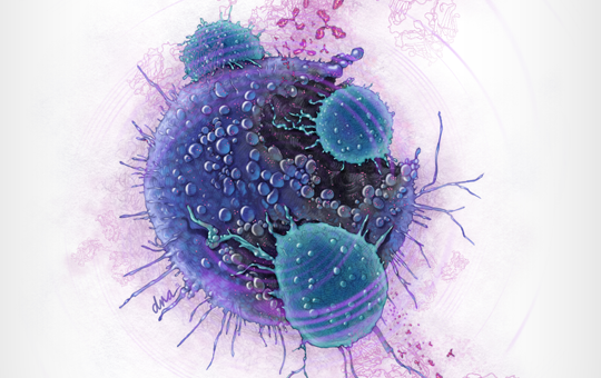 Fundamentals of Immuno-oncology
