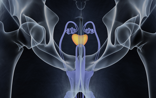 Nonmetastatic and Metastatic Castration-Resistant Prostate Cancer