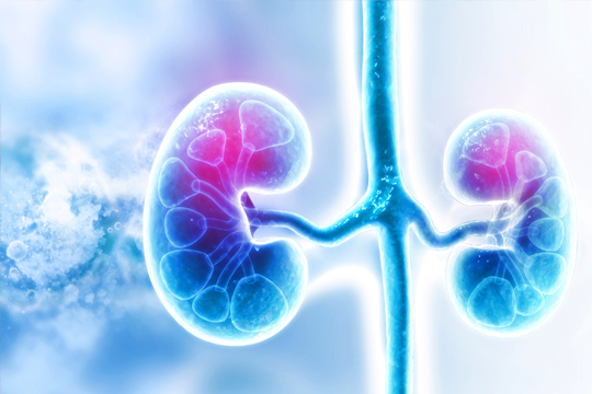 <a href='/the-exchange/acute-renal-failure-after-cancer-treatment'>Acute Renal Failure After Cancer Treatment</a>